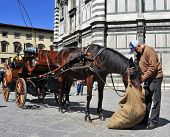 FLORENCE, ITALY - APRIL 14: Carriage in front of Battistero di San Giovanni on April 14, 2013 in Florence, Italy. A service of horse-drawn carriages carry tourists around the old city