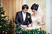 image of solemn  - Solemn registration of marriage in the Wedding Palace - JPG