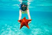 Underwater photo of young woman holding a giant starfish