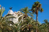 Alicante La Explanada buildings with plam trees in Valencian community of Spain