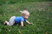 Baby Boy Crawling On Grass