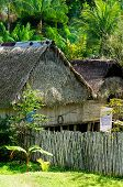 Native American Houses Of Straw In Amazonia