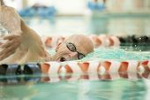 closeup of man in his 70s swimming laps in pool