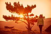 Lonely Tree On Mountain And Woman Walking Alone  Sunset Landscape Lifestyle Concept