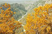Autumn landscape of Verdon gorge.