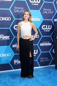 LOS ANGELES - JUL 27:  Amy Purdy at the 2014 Young Hollywood Awards  at the Wiltern Theater on July 27, 2014 in Los Angeles, CA