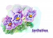 Invitation with pansy flowers. Watercolor painting.