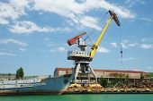 the image of a harbour crane