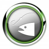 Icon, Button, Pictogram Fishing, Angling