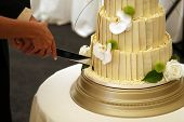 Bride And Grooms Wedding Cake