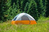 Tent On The Green Meadow