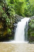 Annadale Falls Grenada
