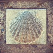 Saint James scallop symbol on Way of St. James