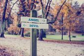 foto of angel devil  - Signpost in a park or forested area with arrows pointing two opposite directions towards Angel and Devil - JPG