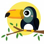 foto of toucan  - a simple illustration of a Toucan Bird - JPG
