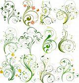 Set of floral vector elements