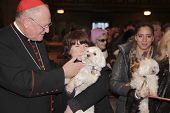 Cardinal Dolan blessing Malteses