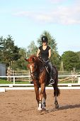 Brunette Woman Riding Trotting Chestnut Horse