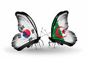 Two Butterflies With Flags On Wings As Symbol Of Relations South Korea And Algeria