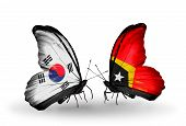 Two Butterflies With Flags On Wings As Symbol Of Relations South Korea And East Timor
