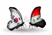 Two Butterflies With Flags On Wings As Symbol Of Relations South Korea And Syria