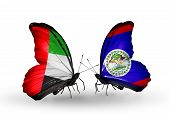 Two Butterflies With Flags On Wings As Symbol Of Relations Uae And Belize