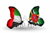 Two Butterflies With Flags On Wings As Symbol Of Relations Uae And Dominica