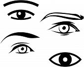 Vector human male and female eyes illustration