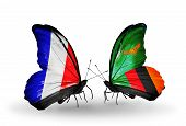 Two Butterflies With Flags On Wings As Symbol Of Relations France And Zambia