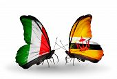 Two Butterflies With Flags On Wings As Symbol Of Relations Italy And Brunei