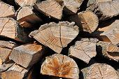 Stacked log