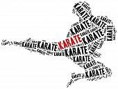Karate Fighter.