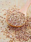 foto of buckwheat  - Buckwheat in a wooden spoon on a wooden boards background - JPG