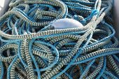 stock photo of nylons  - Blue nylon rope in two shades in the harbor used for fishing cod using fishing net - JPG
