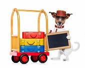 stock photo of porter  - Jack russell dog pushing a hotel Luggage cart full of luggage ready to check into a pet friendly hotel holding an empty blank blackboard isolated on white background - JPG