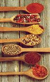 picture of saffron  - Wooden Spoons with Saffron Sumac Coriander Dried Chili Curry Powder Mixed Pepper and Paprika on Rustic Wooden background - JPG