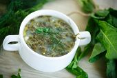 pic of sorrel  - Sorrel soup with egg and greens in a plate - JPG