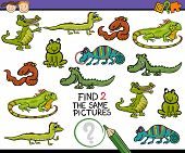 foto of brain-teaser  - Cartoon Illustration of Finding the Same Picture Educational Game for Preschool Children - JPG