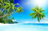 Tropical Paradise Beach Seascape Travel Destination Concept poster