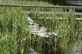 foto of outboard engine  - one small rowboat with and outboard engine is pulled ashore at the edge of a lake partially surrounded by marsh grass and reeds - JPG