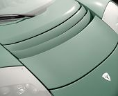 Tesla Roadster Carhood