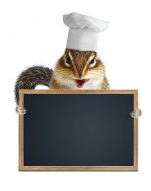 picture of laughable  - Funny chipmunk chef cook hold menu blackboard - JPG