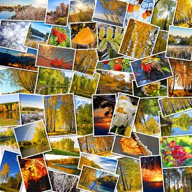 stock photo of siberia  - Collage of nature photos of Siberia in Russia in the autumn - JPG