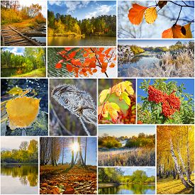 image of siberia  - Collage of nature photos of Siberia in Russia in the autumn - JPG