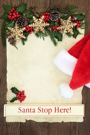 pic of greenery  - Letter to santa with sign - JPG
