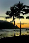 Paradise On Kauai