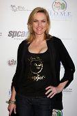 LOS ANGELES - 24 de mayo: Elaine Hendrix. al llegar a la celebridad Casino Royale evento en Avalon en Ma