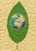 stock photo of recycled paper  - illustration of  the world and leaf - JPG