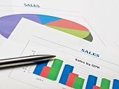 Sales Charts