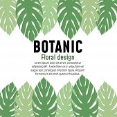Vector Floral Greenery Botanic Poster Card Design: Forest Fern Frond Eucalyptus Branch Green Leaves  poster